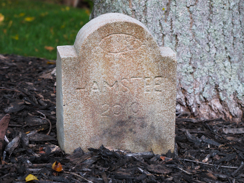 Hampstee Tombstone